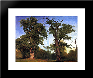 Pioneers Of The Woods: Modern Black Framed Art Print by Albert Bierstadt