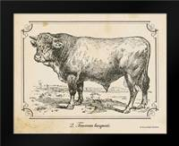 Farm Bull II: Framed Art Print by Babbitt, Gwendolyn