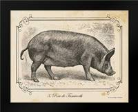 Farm Pig I: Framed Art Print by Babbitt, Gwendolyn