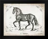 Farm Horse II: Framed Art Print by Babbitt, Gwendolyn