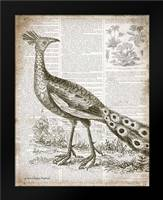 Vintage Bird I: Framed Art Print by Babbitt, Gwendolyn