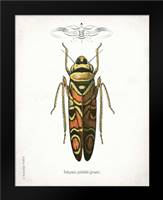 Beetle III: Framed Art Print by Babbitt, Gwendolyn