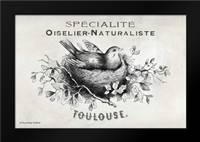 French Bird Nest I: Framed Art Print by Babbitt, Gwendolyn
