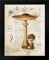 Mushroom I: Framed Art Print by Babbitt, Gwendolyn