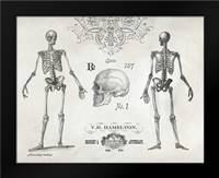 Elegant Skeletons: Framed Art Print by Babbitt, Gwendolyn
