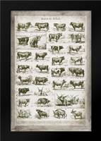 French Cow Chart: Framed Art Print by Babbitt, Gwendolyn