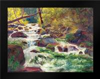 Mountain Stream: Framed Art Print by Bailey, Carol