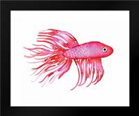 Deep Sea Pink Fish: Framed Art Print by Berrenson, Sara