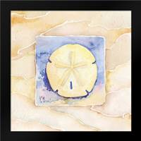 Sand dollar: Framed Art Print by Brent, Paul