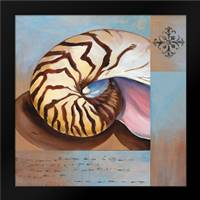 Sanibel Nautilus: Framed Art Print by Brent, Paul