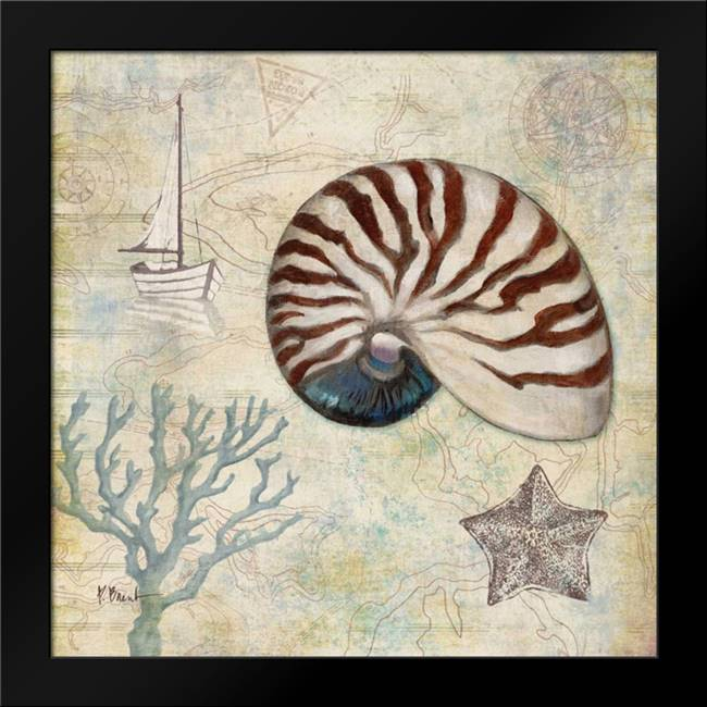 Discovery Shell I: Framed Art Print by Brent, Paul