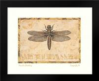 Dragonfly IV: Framed Art Print by Gladding, Pamela