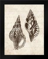 Elegant Shells I - mini: Framed Art Print by Harbick, N