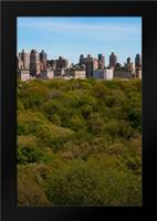 Central Park I: Framed Art Print by Berzel, Erin