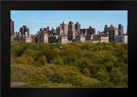 Central Park II: Framed Art Print by Berzel, Erin