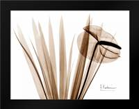 Flamingo Plant: Framed Art Print by Koetsier, Albert