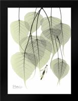 Bo Tree_L264: Framed Art Print by Koetsier, Albert