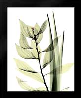 Leaf Composition: Framed Art Print by Koetsier, Albert