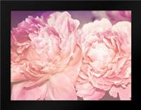 Pink Peony: Framed Art Print by Davis Ashley