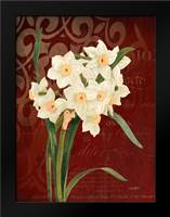 Narcissus 1: Framed Art Print by Stimson, Diane