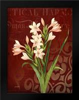 Narcissus 2: Framed Art Print by Stimson, Diane