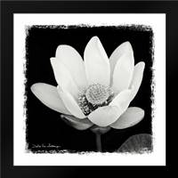 Lotus Flower I: Framed Art Print by Van Swearingen, Debra