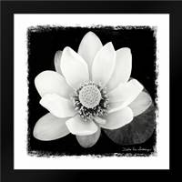 Lotus Flower II: Framed Art Print by Van Swearingen, Debra