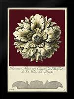 Rosone Antico II: Framed Art Print by Guerra