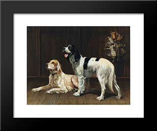 A Pair Of Setters: Custom Black Wood Framed Art Print by Alexander Pope