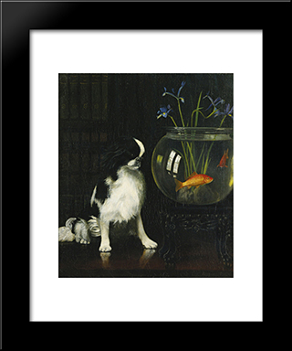 Japanese Chin And Goldfish: Modern Black Framed Art Print by Alexander Pope