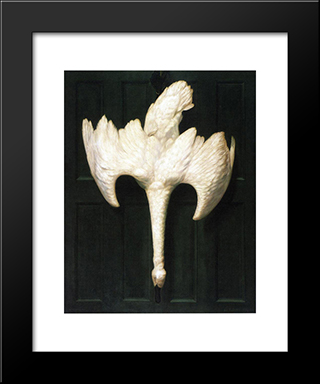 The Trumpeter Swan: Modern Black Framed Art Print by Alexander Pope