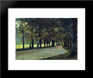 Alley In The Park, Liechtenstein:  Modern Black Framed Art Print by Alexey Bogolyubov