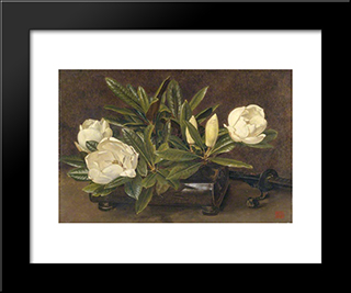 Magnolias:  Modern Black Framed Art Print by Alfred Parsons