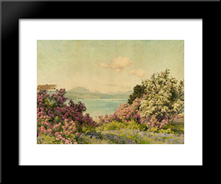 The Narrows At Rosneath And The Gareloch:  Modern Black Framed Art Print by Alfred Parsons