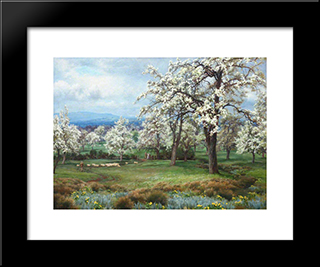 The Pear Orchard:  Modern Black Framed Art Print by Alfred Parsons
