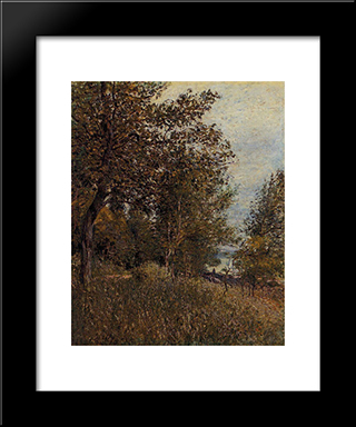 A Corner Of The Roches Courtaut Woods, June:  Modern Black Framed Art Print by Alfred Sisley