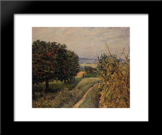 Among The Vines Near Louveciennes:  Modern Black Framed Art Print by Alfred Sisley