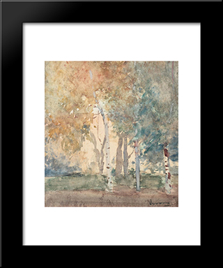 Birch Forest:  Modern Black Framed Art Print by Arthur Verona