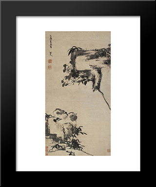 Bamboo, Rock, And Mandarin Ducks:  Modern Black Framed Art Print by Bada Shanren