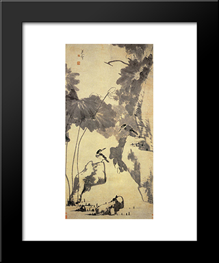 Lotus And Birds:  Modern Black Framed Art Print by Bada Shanren