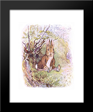 Benjamin Bunny:  Modern Black Framed Art Print by Beatrix Potter
