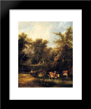 Cattle By A Stream:  Modern Black Framed Art Print by William Shayer