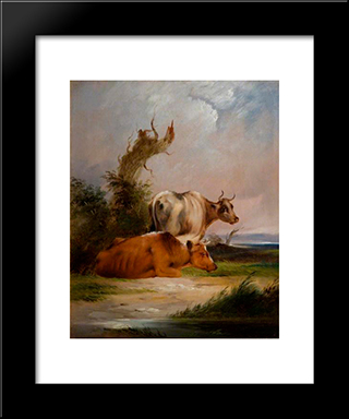 Cows, White Cow Standing:  Modern Black Framed Art Print by William Shayer