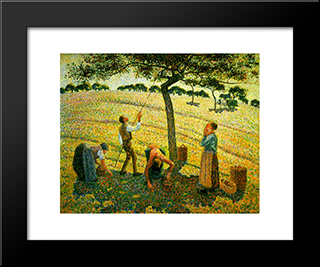 Apple Picking At Eragny-Sur-Epte: Modern Black Framed Art Print by Camille Pissarro