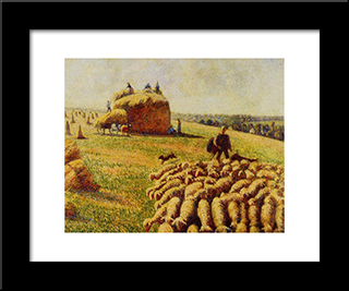 Flock Of Sheep In A Field After The Harvest: Modern Black Framed Art Print by Camille Pissarro
