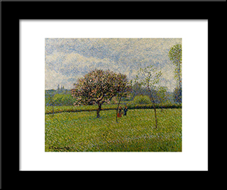 Flowering Apple Trees At Eragny: Modern Black Framed Art Print by Camille Pissarro