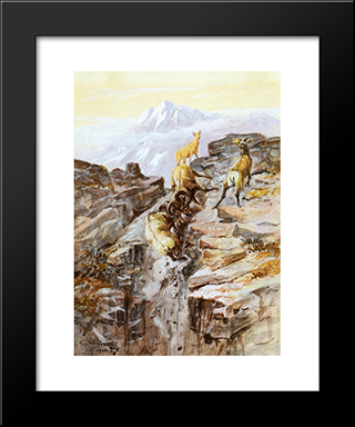 Big Horn Sheep: Modern Black Framed Art Print by Charles M. Russell