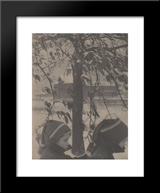 The Brothers: Modern Black Framed Art Print by Clarence White