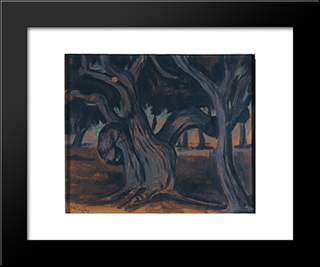 Olive Trees: Modern Black Framed Art Print by Constantine Maleas