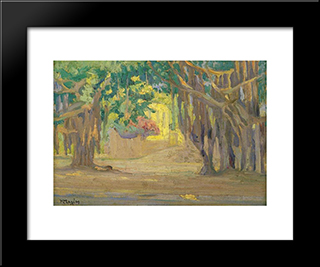 Trees At Cairo: Modern Black Framed Art Print by Constantine Maleas